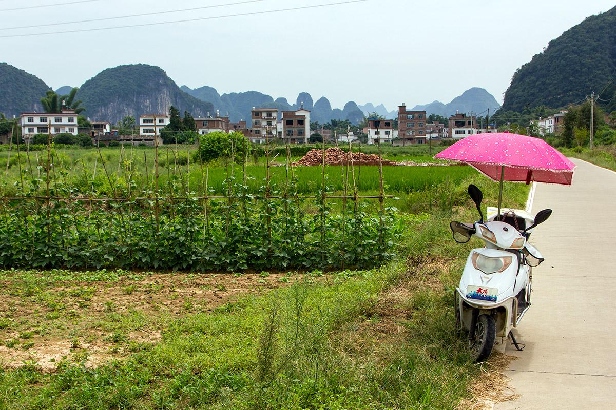 Bicycle Trip in Guilin